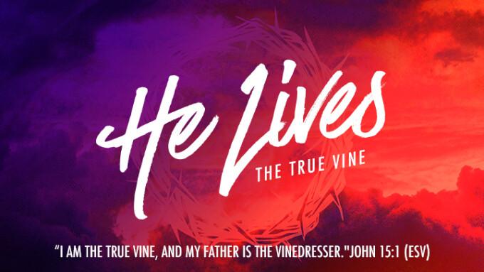 He Lives: The True Vine